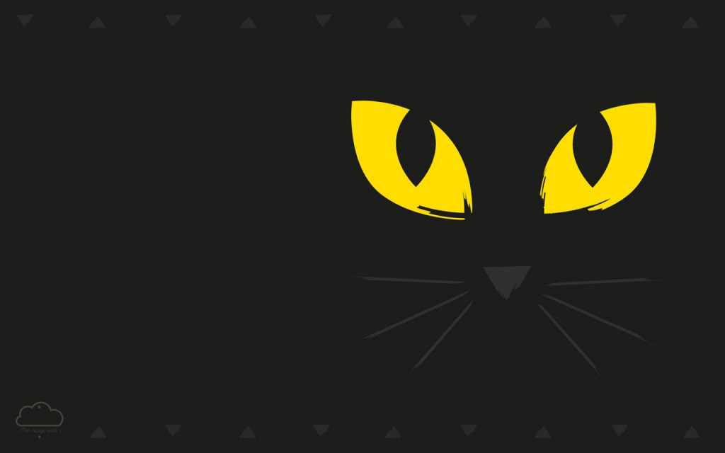 ordinateur-chat-halloween-2015